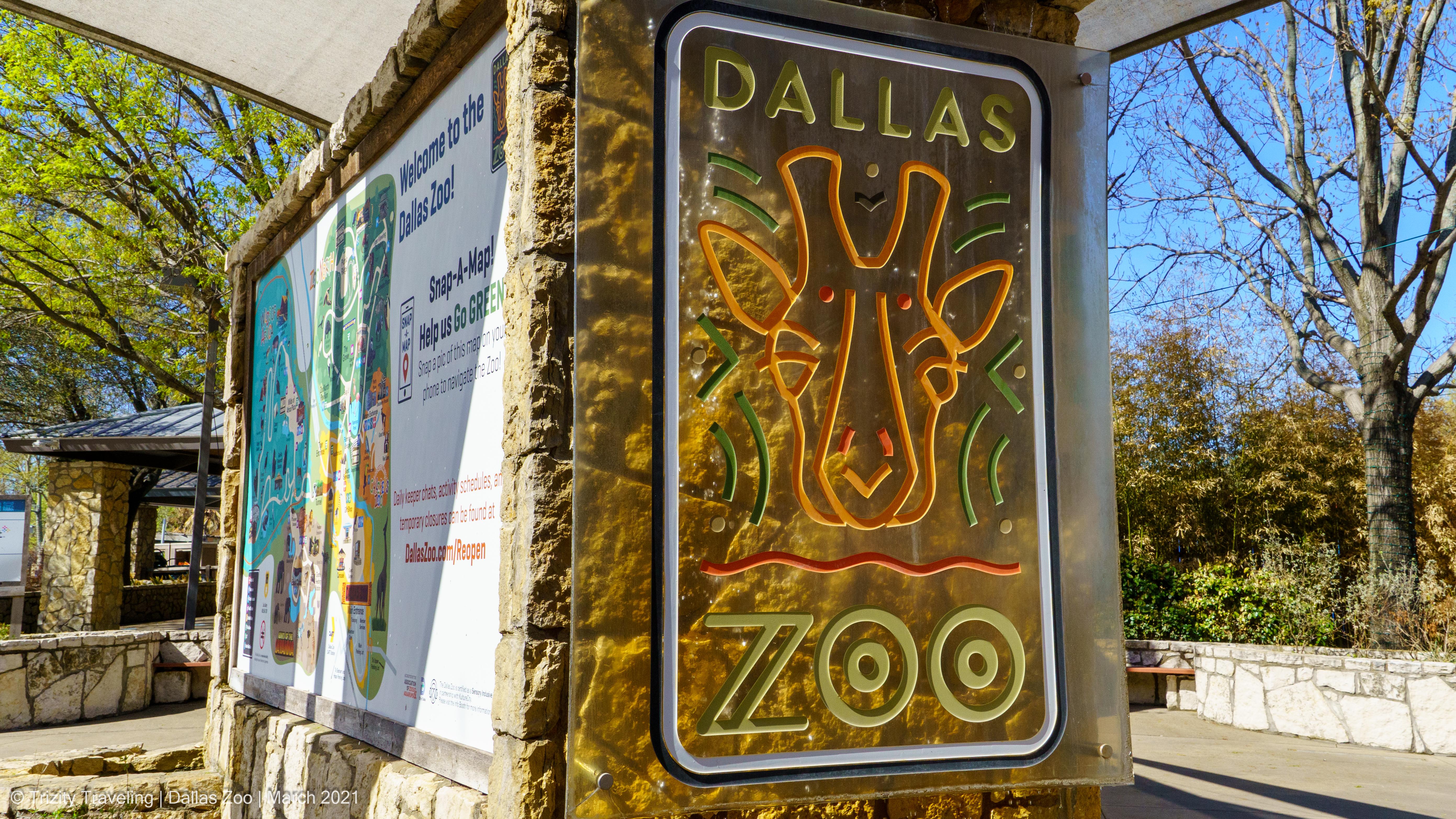 Dallas Zoo – Spring Break 2021